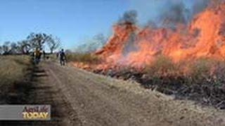 Rekindled Interest In Prescribed Fire