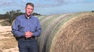 Animal Science: Hay Considerations - AgSmart.tv
