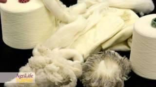 Versatile Wool