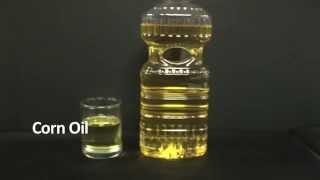 Oil Melting Point Experiment