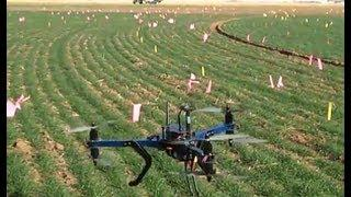 Using Drones To Detect Wheat Disease Spread