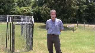 Wildlife And Fisheries: Feral Hog Management Part 2 - AgSmart.tv