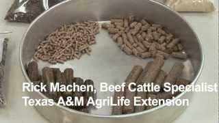 Animal Science: Pelleted Feeds - AgSmart.tv