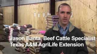 Animal Science: Feeding For Intended Use - AgSmart.tv