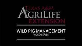 Wild Pig Management Series